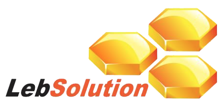 lebsolution-logo