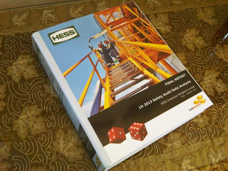 web-lebsolution-project014-sep-oct2013-hess-audit-analysis