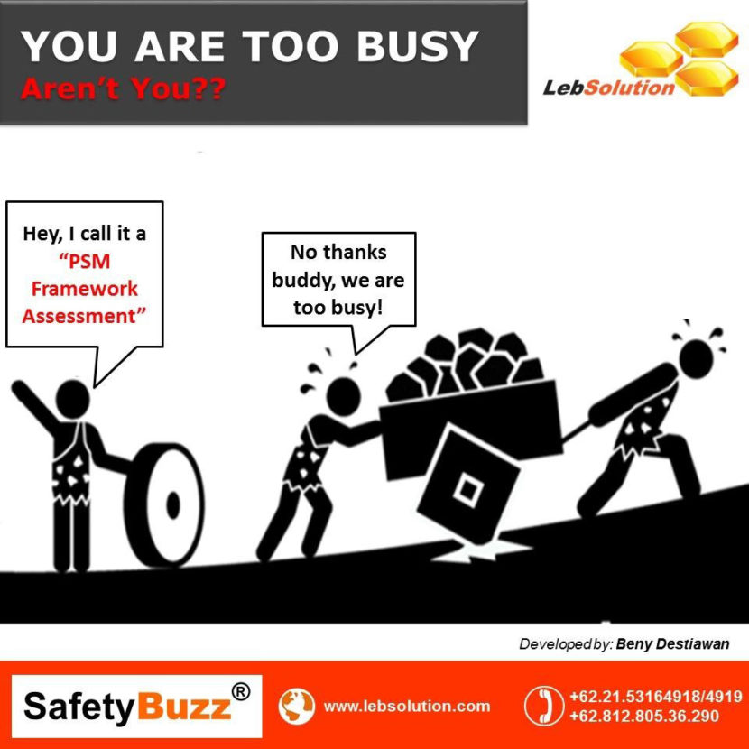 are you too busy for psm lebsolution